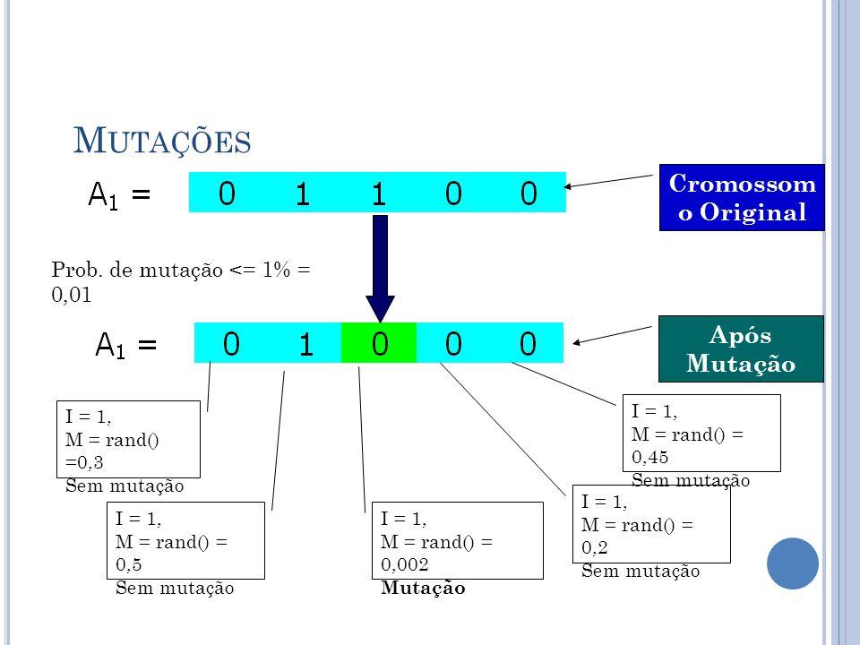 Mutações Cromossomo Original Após Mutação