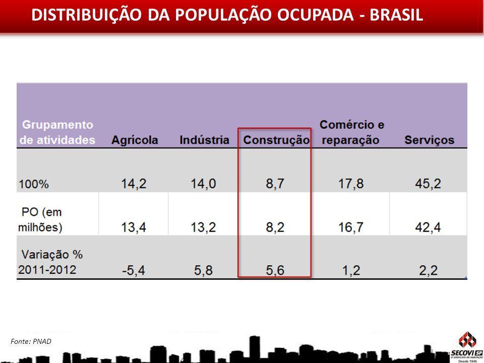 DISTRIBUIÇÃO DA POPULAÇÃO OCUPADA - BRASIL
