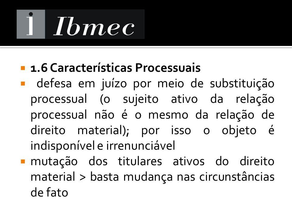 1.6 Características Processuais
