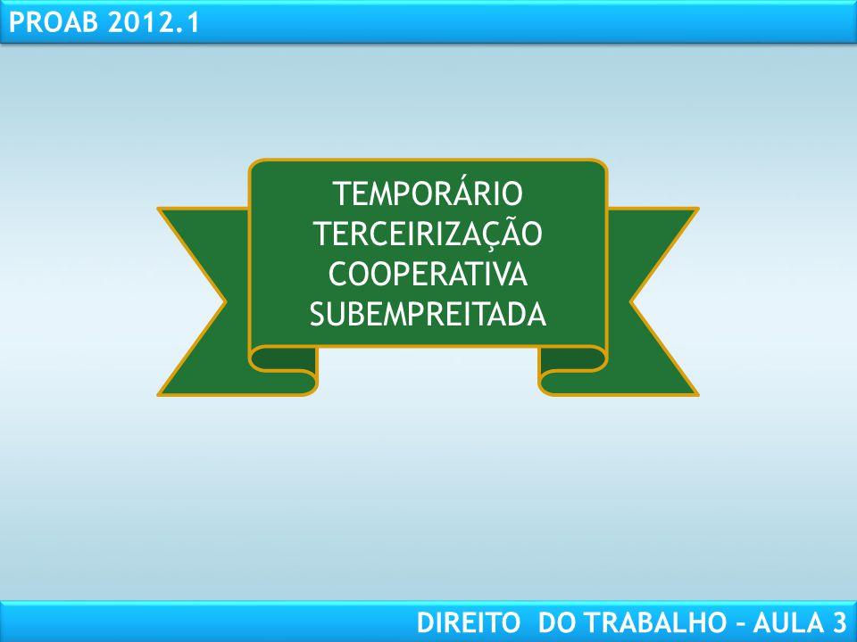 TEMPORÁRIO TERCEIRIZAÇÃO COOPERATIVA SUBEMPREITADA