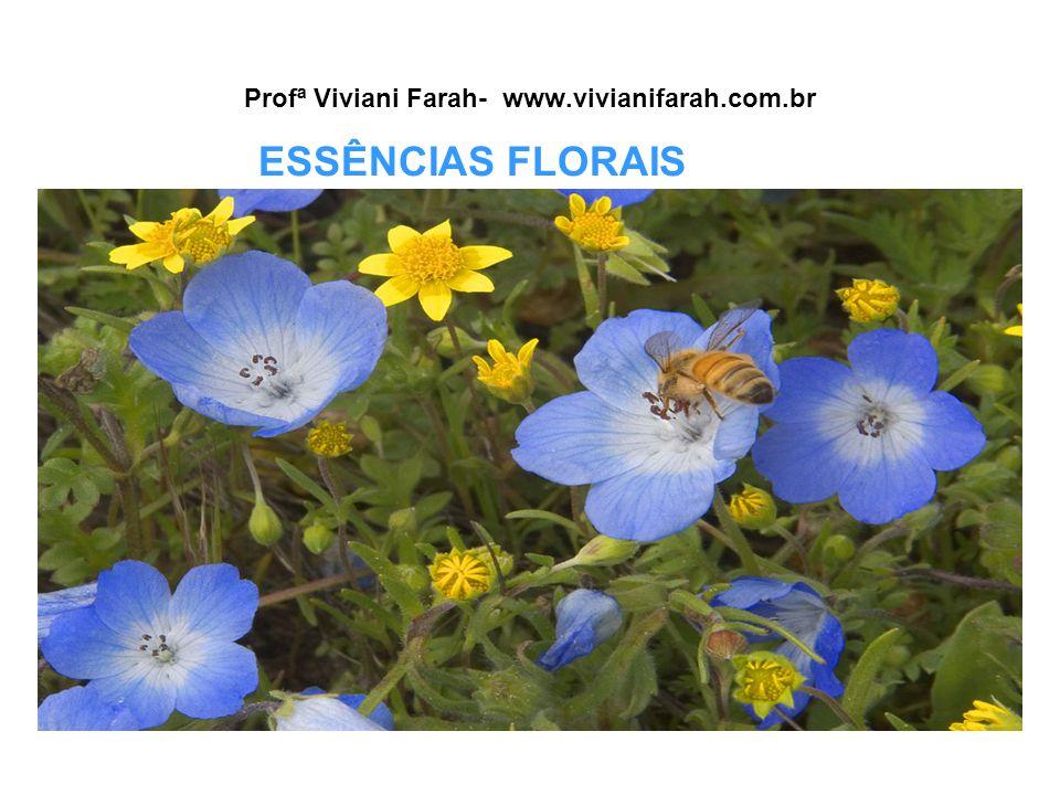 Profª Viviani Farah- www.vivianifarah.com.br