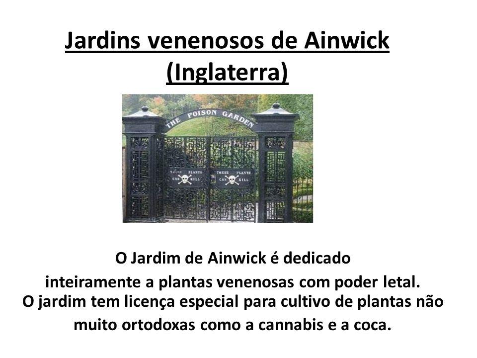 Jardins venenosos de Ainwick (Inglaterra)