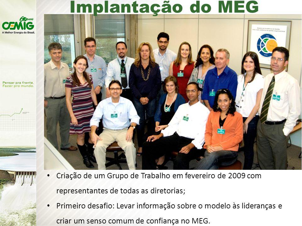 Implantação do MEG Criação de um Grupo de Trabalho em fevereiro de 2009 com representantes de todas as diretorias;