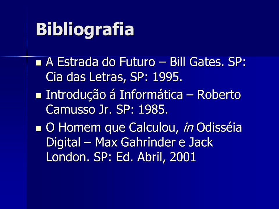 Bibliografia A Estrada do Futuro – Bill Gates. SP: Cia das Letras, SP: 1995. Introdução á Informática – Roberto Camusso Jr. SP: 1985.