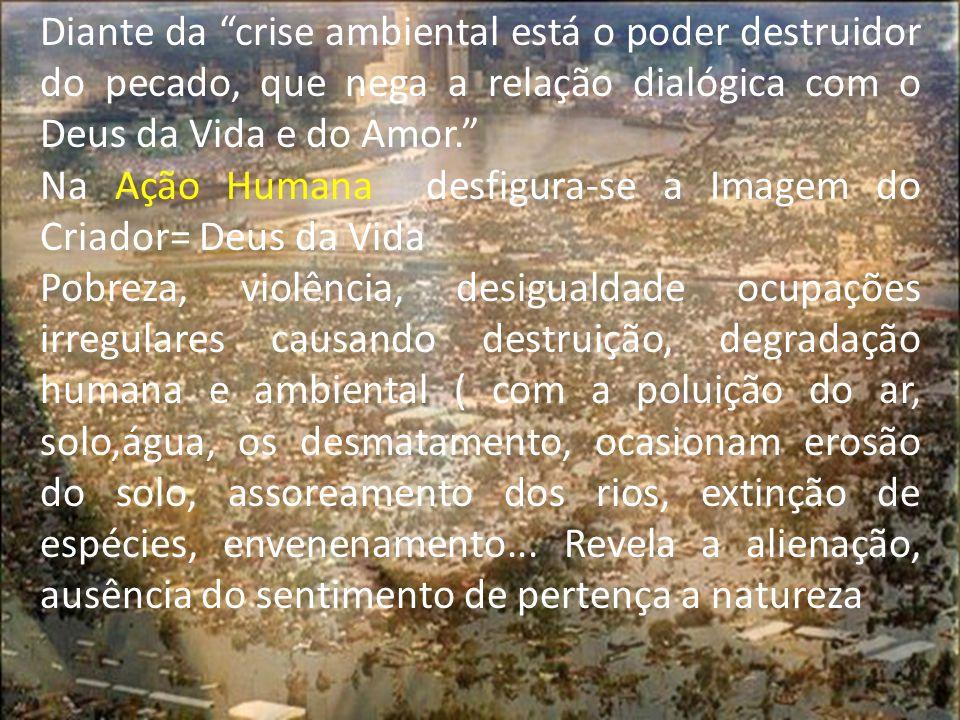 Diante da crise ambiental está o poder destruidor do pecado, que nega a relação dialógica com o Deus da Vida e do Amor.
