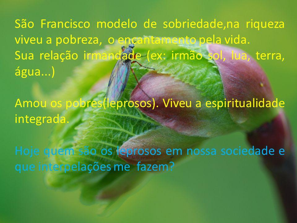 São Francisco modelo de sobriedade,na riqueza viveu a pobreza, o encantamento pela vida.