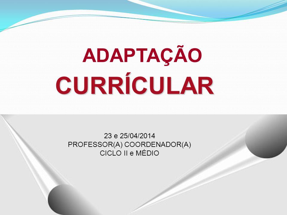 PROFESSOR(A) COORDENADOR(A)