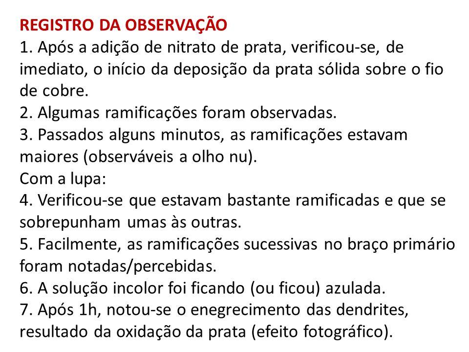 REGISTRO DA OBSERVAÇÃO