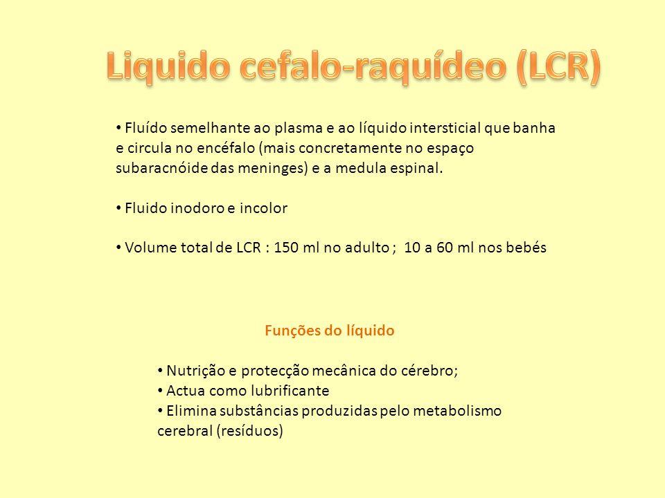 Liquido cefalo-raquídeo (LCR)