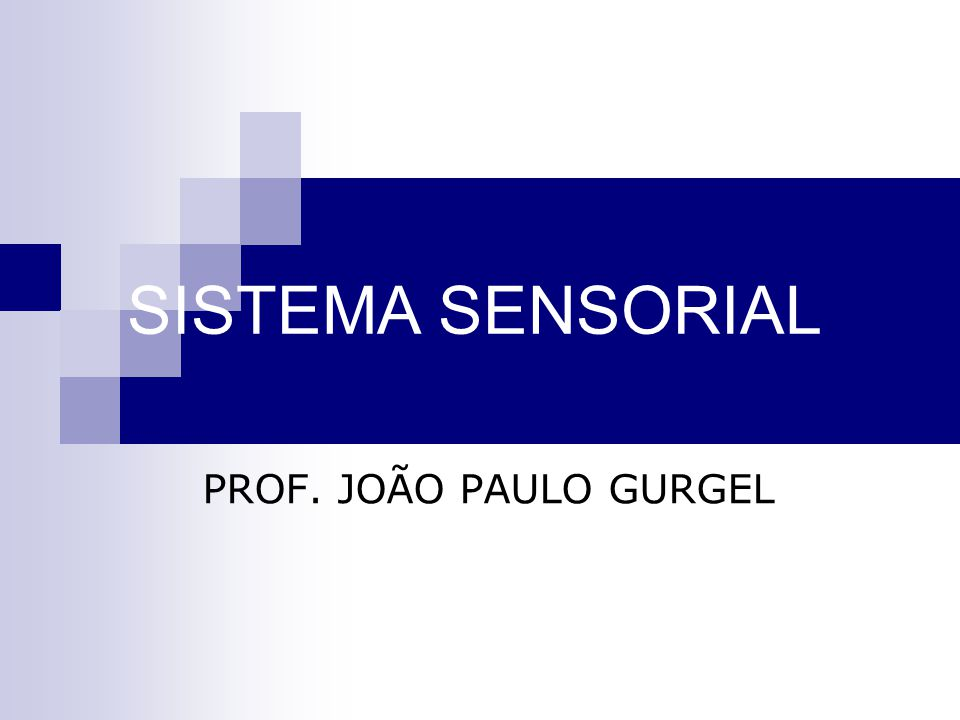 SISTEMA SENSORIAL PROF. JOÃO PAULO GURGEL