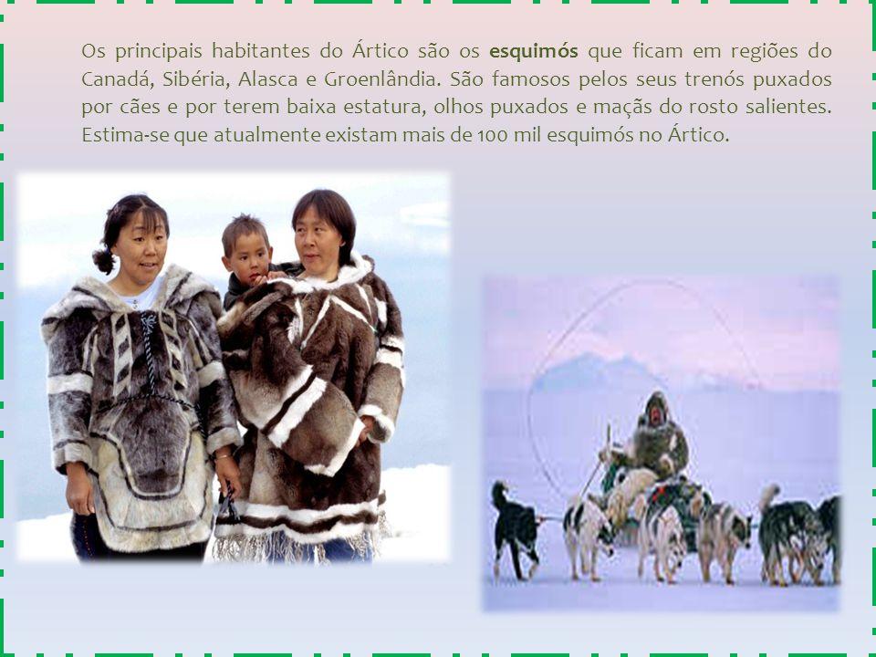 Os principais habitantes do Ártico são os esquimós que ficam em regiões do Canadá, Sibéria, Alasca e Groenlândia.