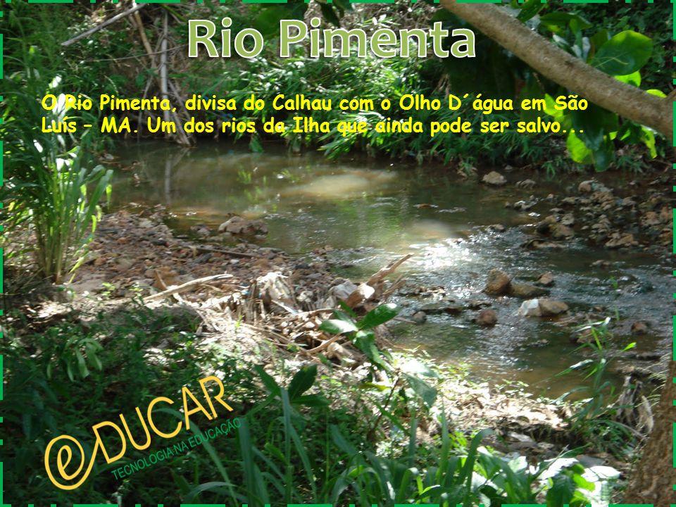 Rio Pimenta O Rio Pimenta, divisa do Calhau com o Olho D´água em São Luís – MA.