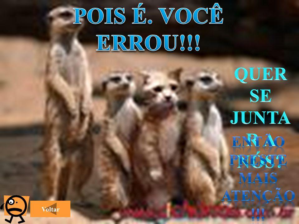 ENTÃO PRESTE MAIS ATENÇÃO!!!