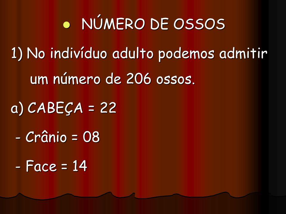 NÚMERO DE OSSOS 1) No indivíduo adulto podemos admitir um número de 206 ossos. a) CABEÇA = 22. - Crânio = 08.