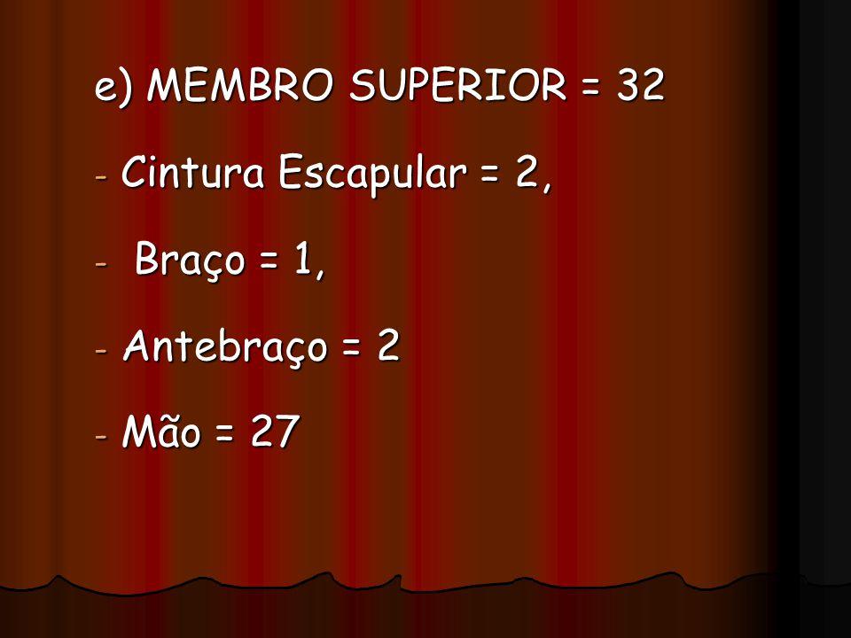 e) MEMBRO SUPERIOR = 32 Cintura Escapular = 2, Braço = 1, Antebraço = 2 Mão = 27