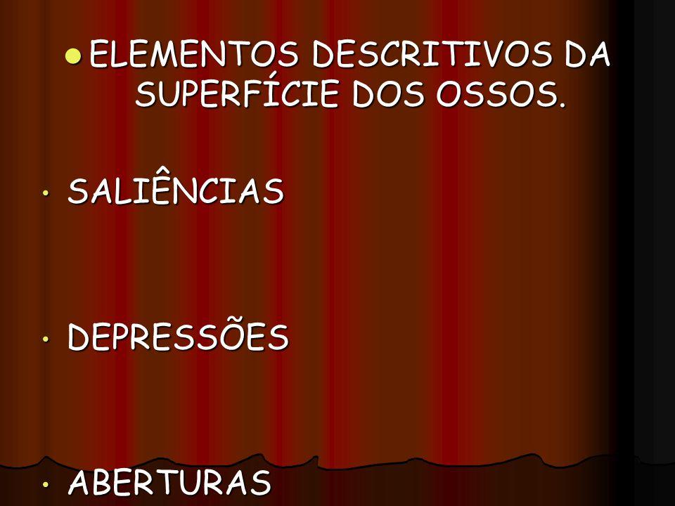 ELEMENTOS DESCRITIVOS DA SUPERFÍCIE DOS OSSOS.