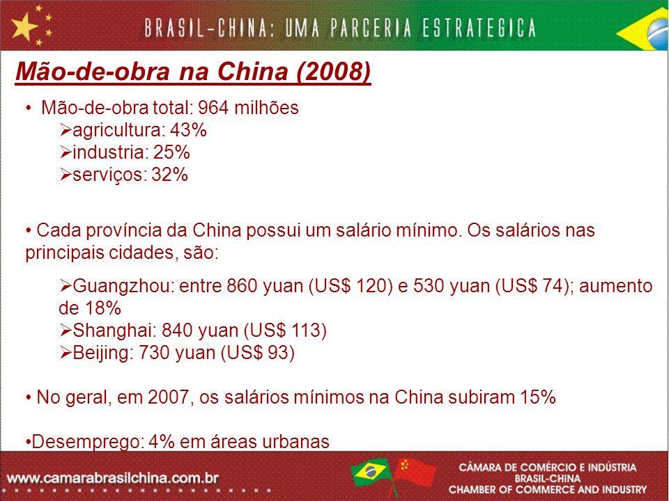 Mão-de-obra na China (2008)