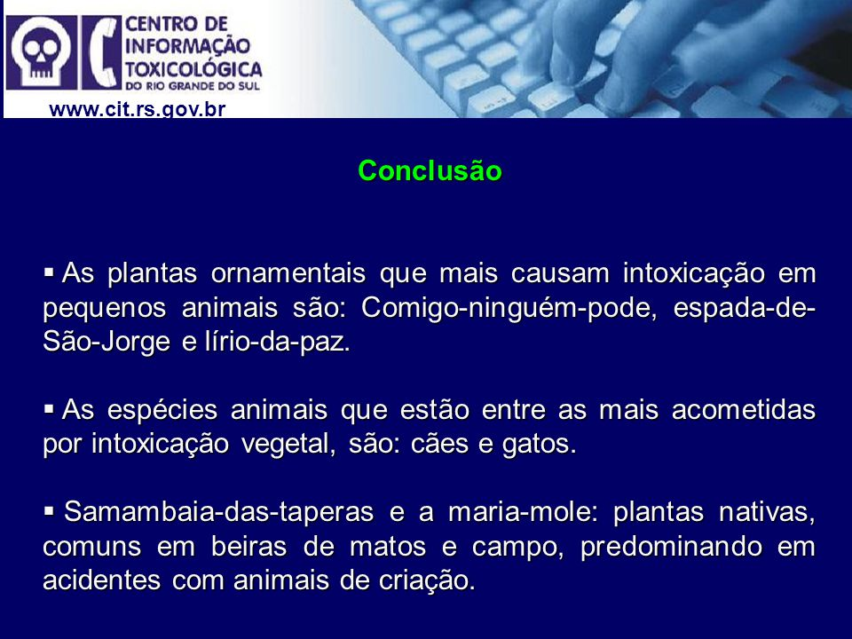 www.cit.rs.gov.br Conclusão.