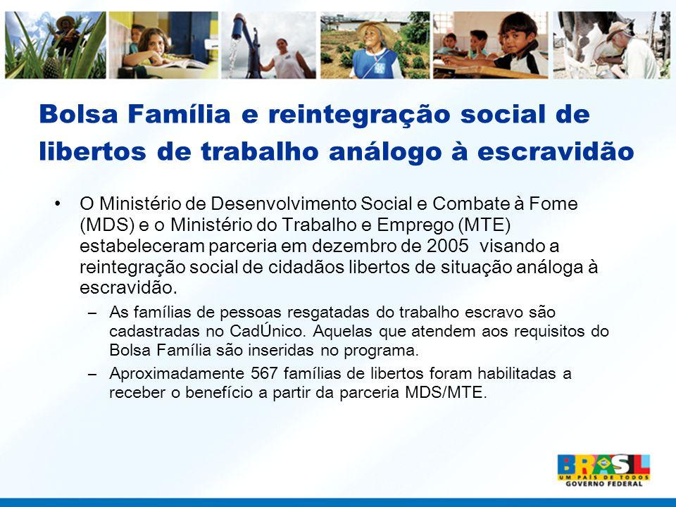 Bolsa Família e reintegração social de libertos de trabalho análogo à escravidão