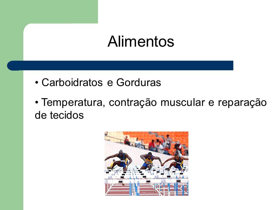 Alimentos Carboidratos e Gorduras