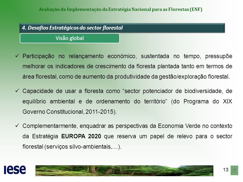 4. Desafios Estratégicos do sector florestal