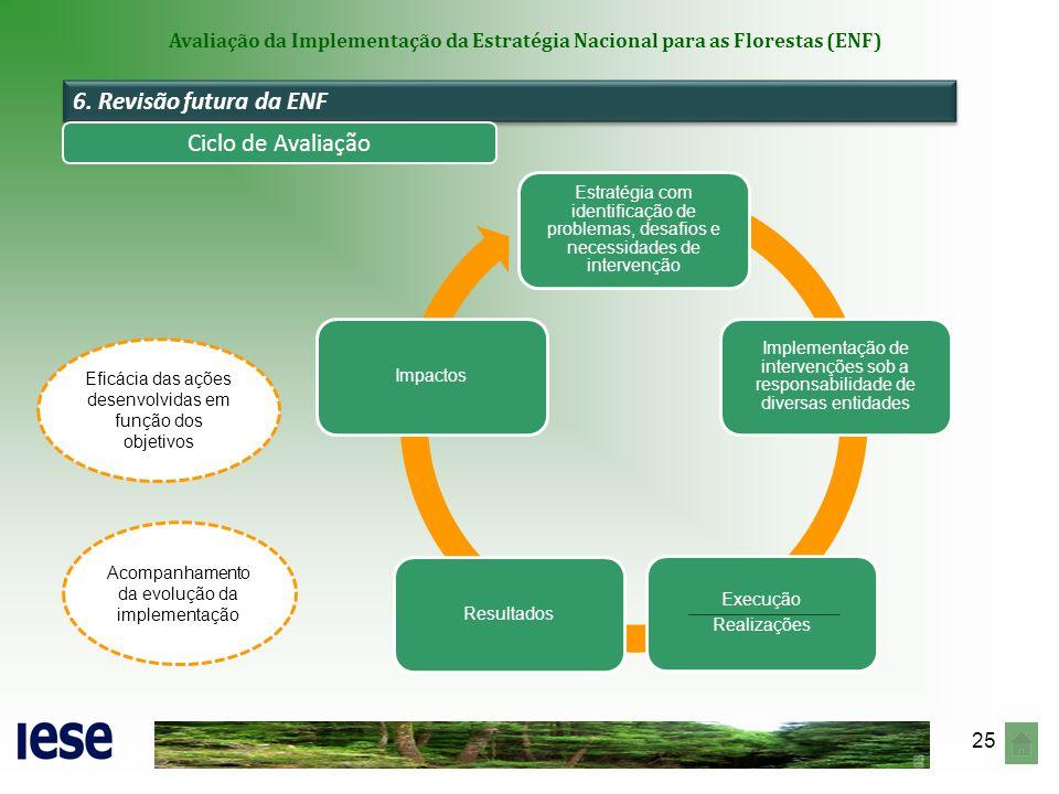 6. Revisão futura da ENF Ciclo de Avaliação