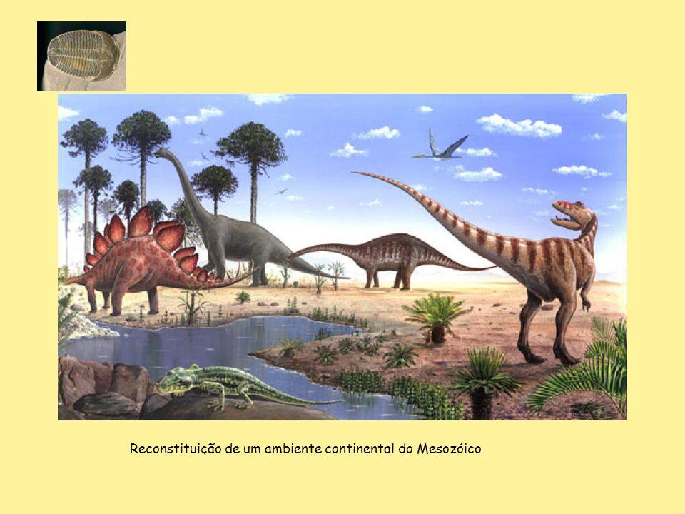 Reconstituição de um ambiente continental do Mesozóico