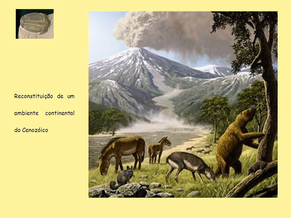 Reconstituição de um ambiente continental do Cenozóico