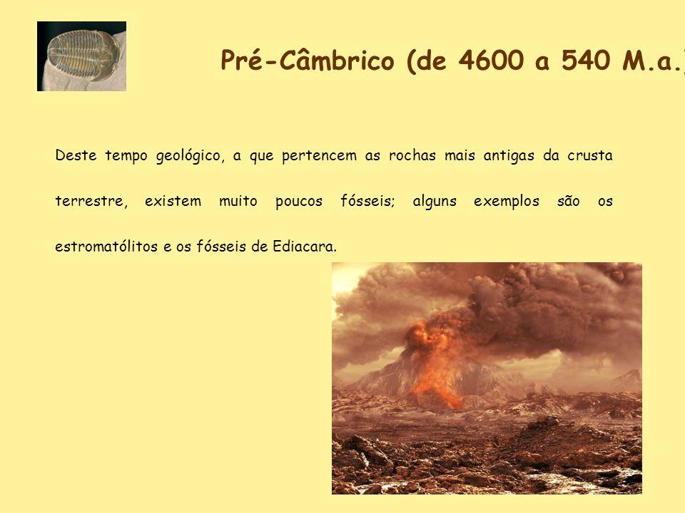 Pré-Câmbrico (de 4600 a 540 M.a.)