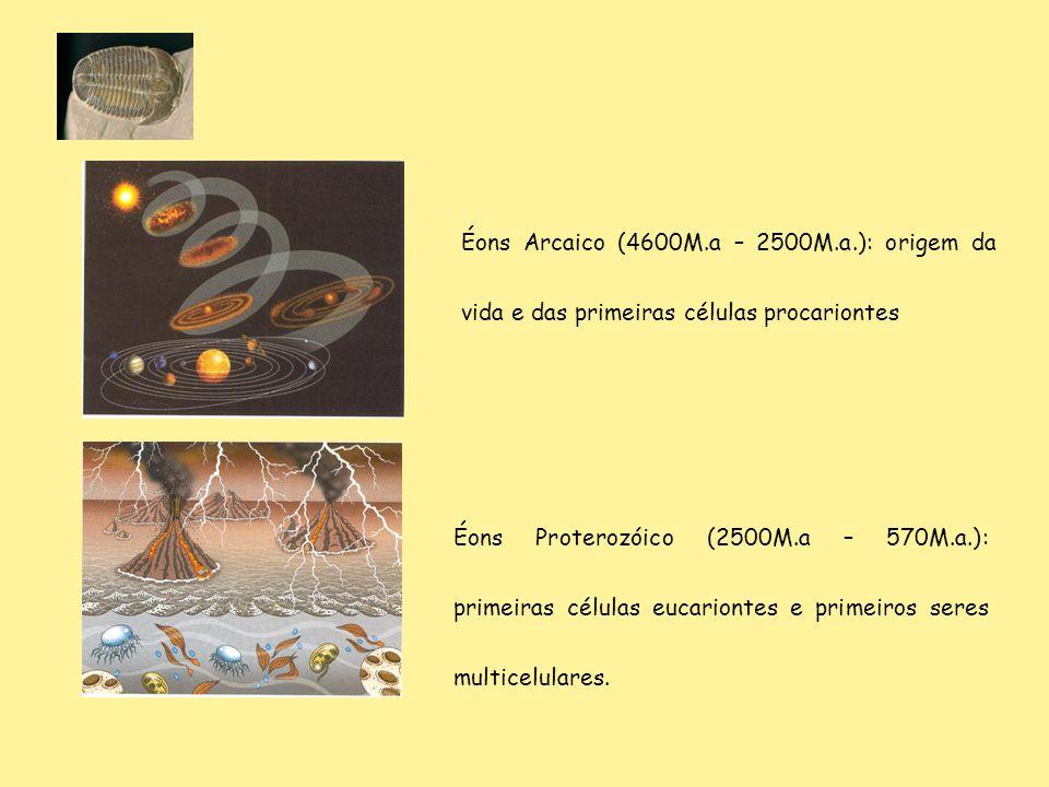 Éons Arcaico (4600M.a – 2500M.a.): origem da vida e das primeiras células procariontes