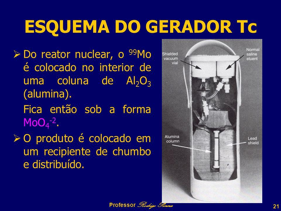 Professor Rodrigo Penna