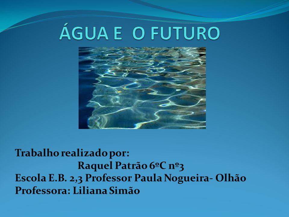 ÁGUA E O FUTURO Trabalho realizado por: Raquel Patrão 6ºC nº3