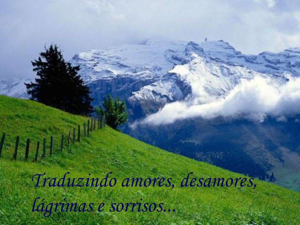 Traduzindo amores, desamores, lágrimas e sorrisos...