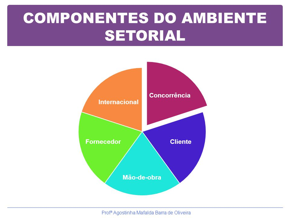 COMPONENTES DO AMBIENTE SETORIAL