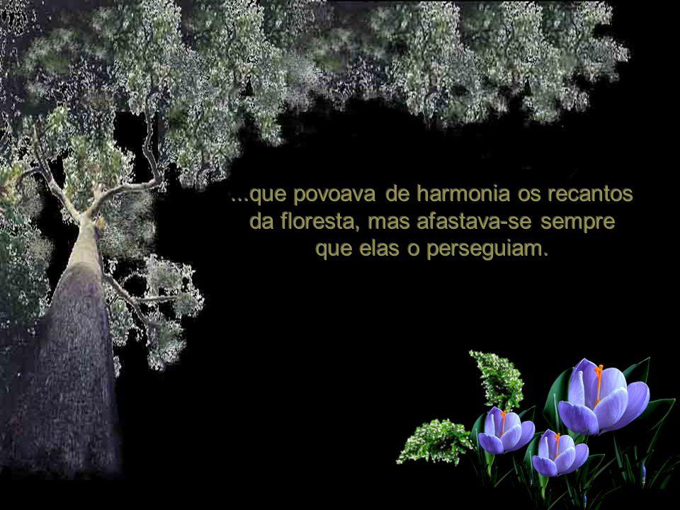 ...que povoava de harmonia os recantos da floresta, mas afastava-se sempre que elas o perseguiam.