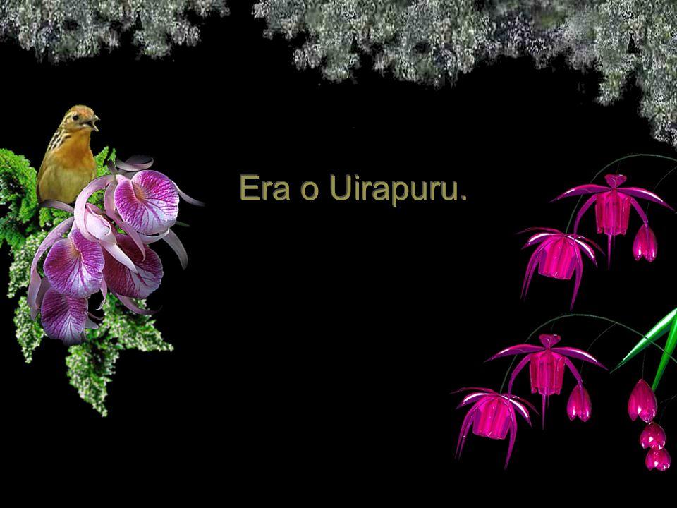 Era o Uirapuru.
