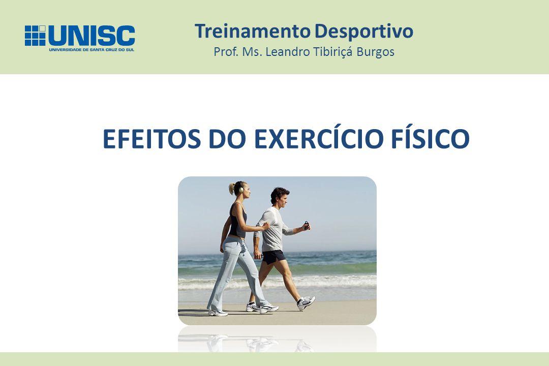EFEITOS DO EXERCÍCIO FÍSICO