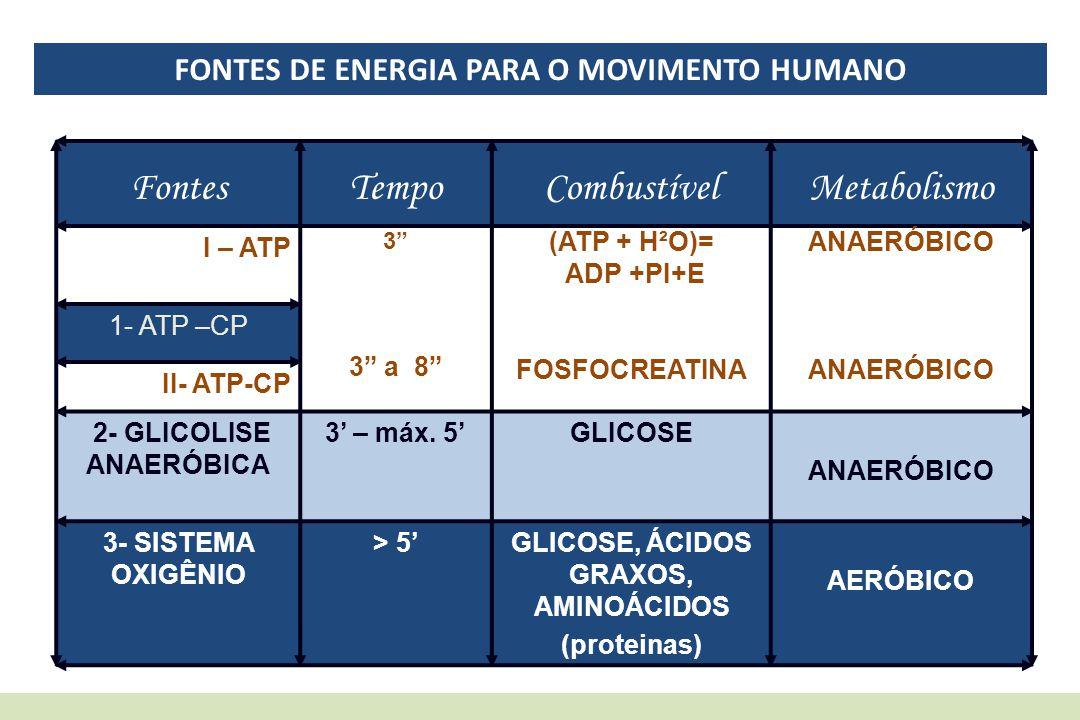 FONTES DE ENERGIA PARA O MOVIMENTO HUMANO