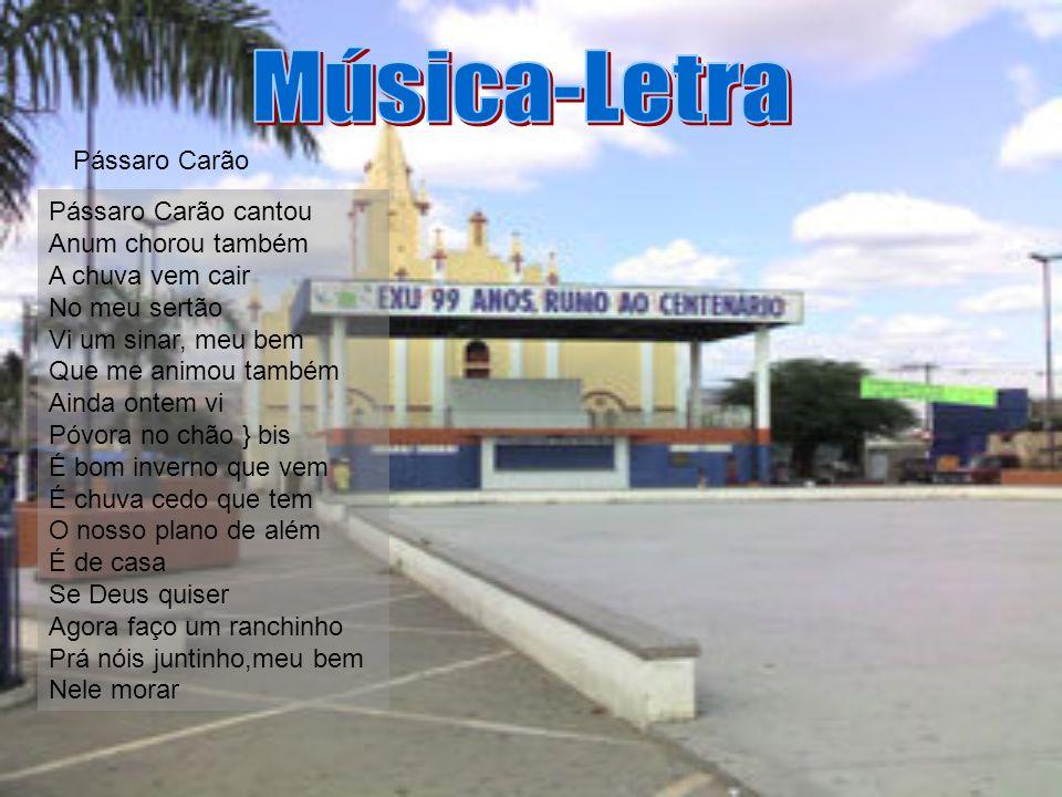 Música-Letra Pássaro Carão
