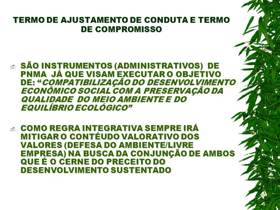 TERMO DE AJUSTAMENTO DE CONDUTA E TERMO DE COMPROMISSO