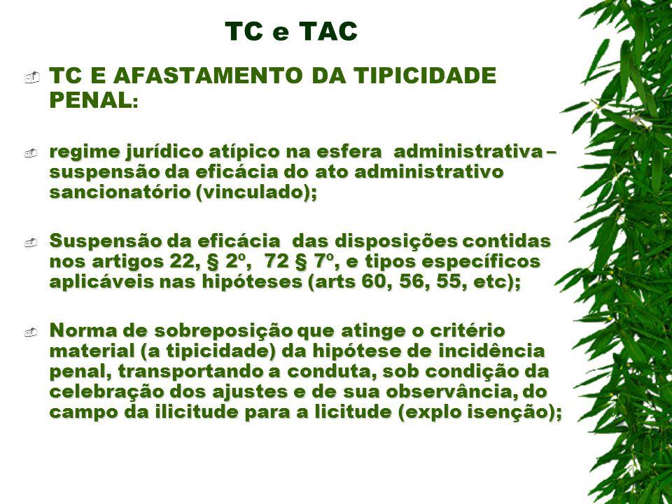 TC e TAC TC E AFASTAMENTO DA TIPICIDADE PENAL: