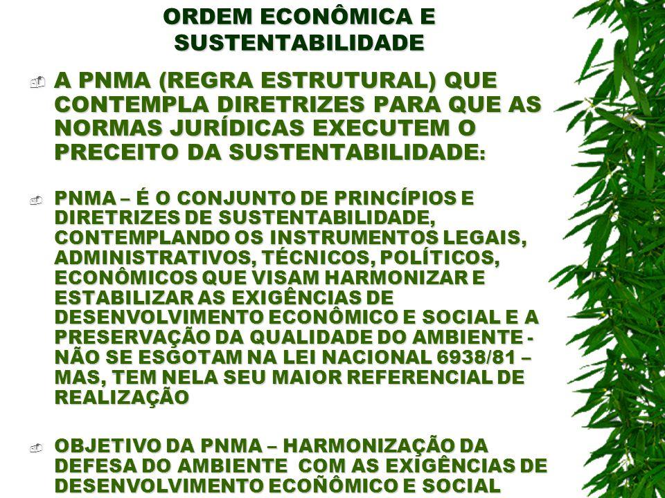 ORDEM ECONÔMICA E SUSTENTABILIDADE