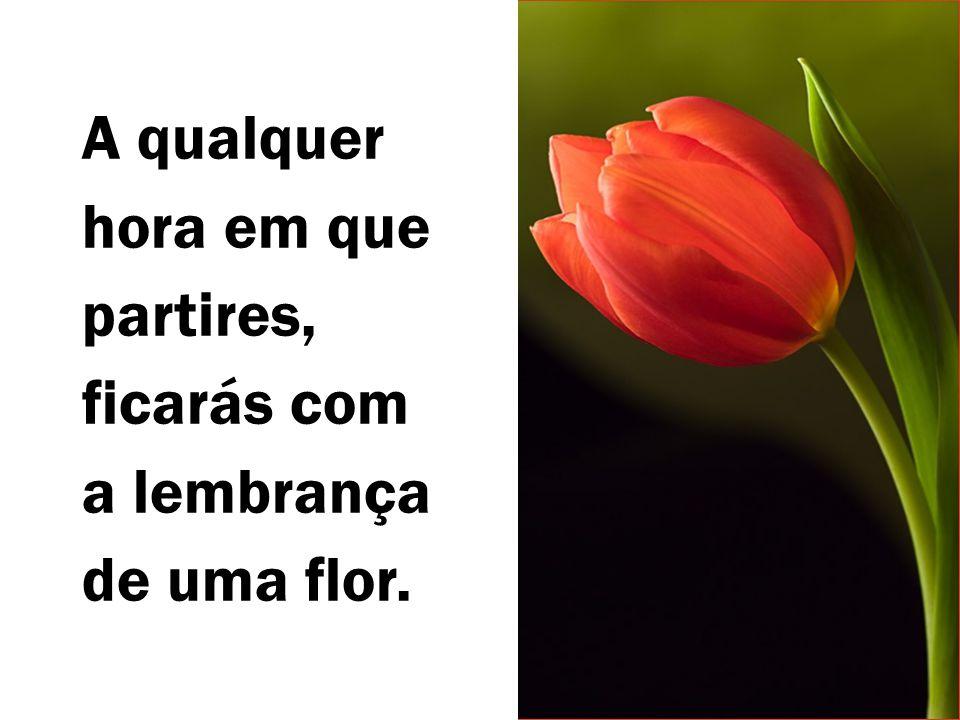 A qualquer hora em que partires, ficarás com a lembrança de uma flor.