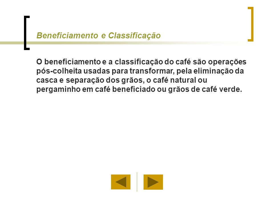 Beneficiamento e Classificação