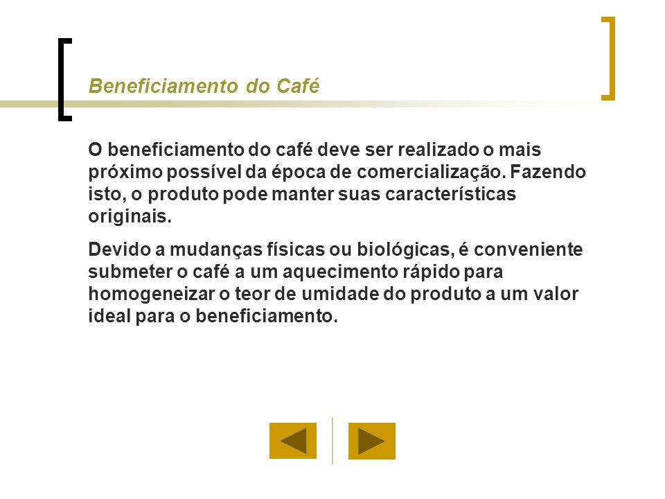 Beneficiamento do Café