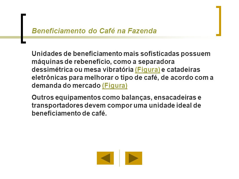 Beneficiamento do Café na Fazenda