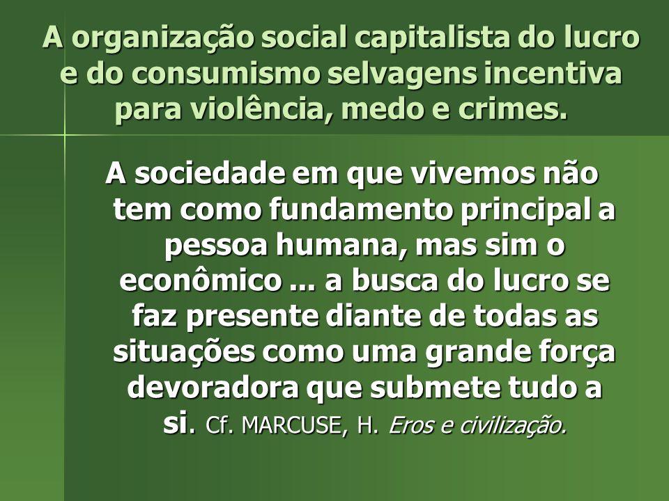 A organização social capitalista do lucro e do consumismo selvagens incentiva para violência, medo e crimes.
