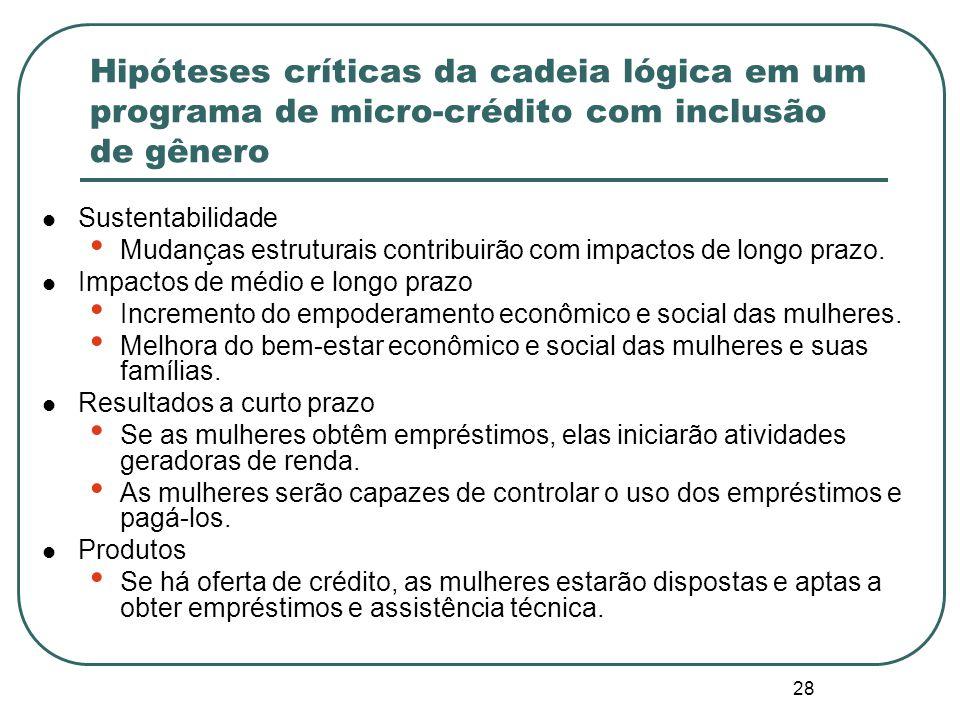 Hipóteses críticas da cadeia lógica em um programa de micro-crédito com inclusão de gênero