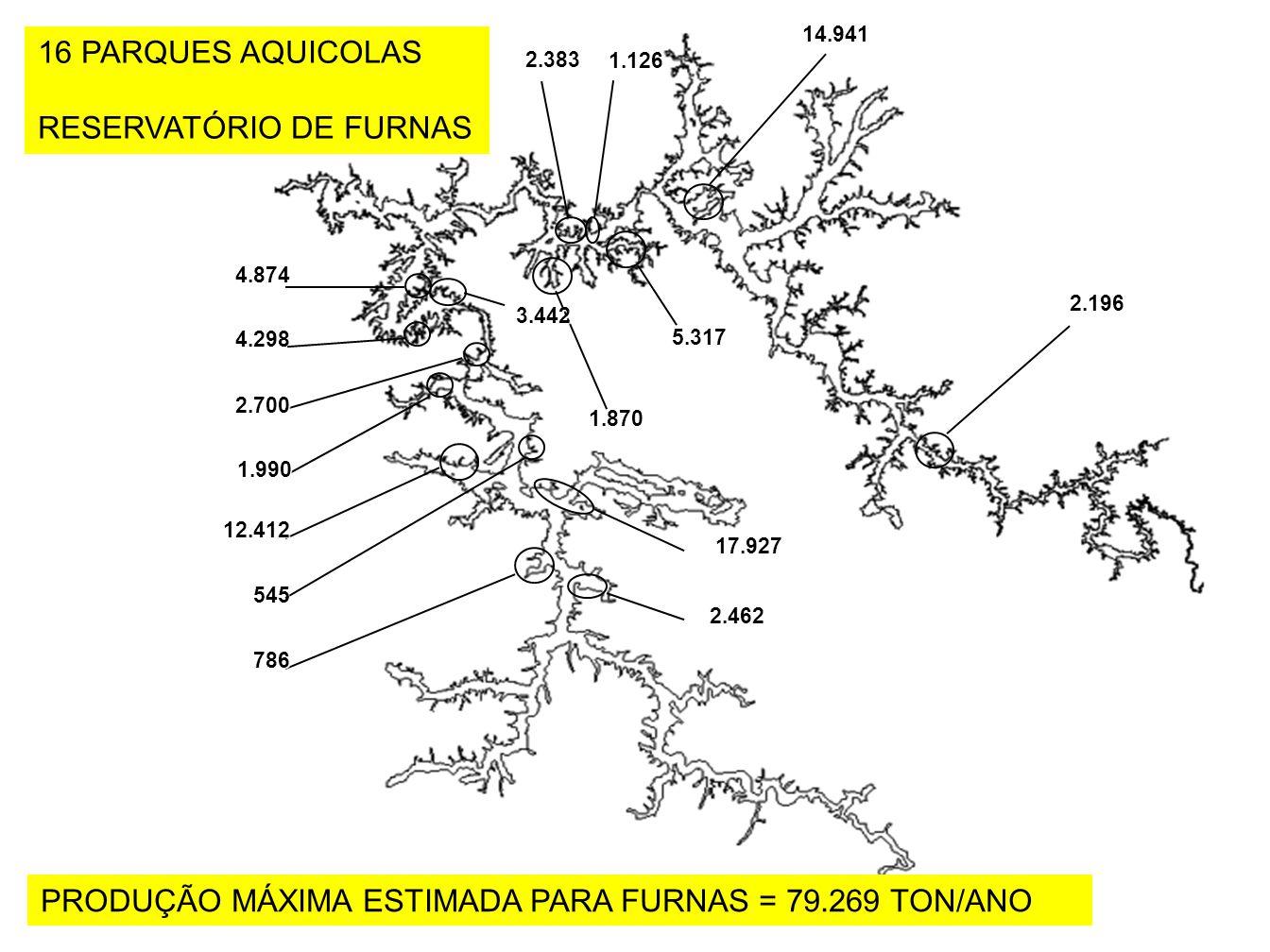 RESERVATÓRIO DE FURNAS