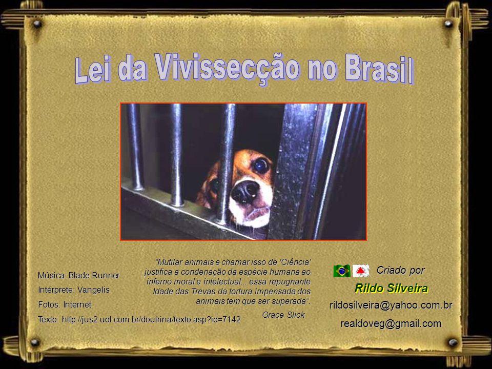 Lei da Vivissecção no Brasil